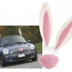 carcostume-easter-300x238